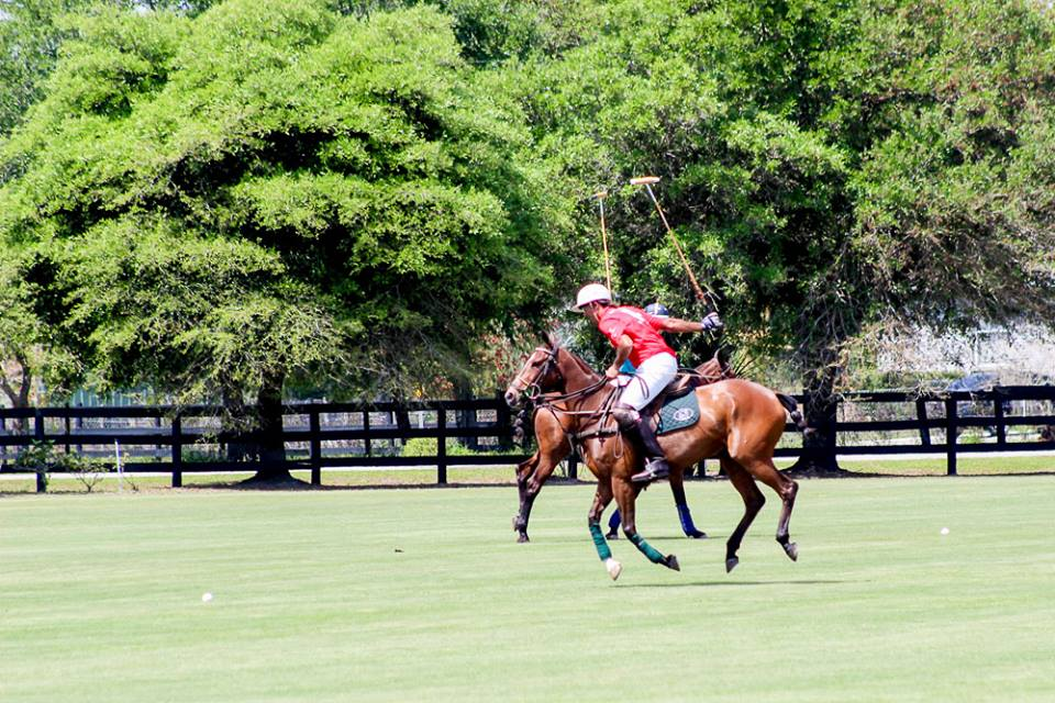 Polo Match Tampa, Charity Polo Classic 2015, Polo Charity Tampa Hat, Tampa Charity Event, Tampa Event Planner, Galas, Charity, Inaugurations , horses, Polo