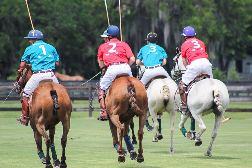 Polo Match Tampa, Charity Polo Classic 2015, Polo Charity Tampa Hat, Tampa Charity Event, Tampa Event Planner, Galas, Charity, Inaugurations, Horses, Plant City polo