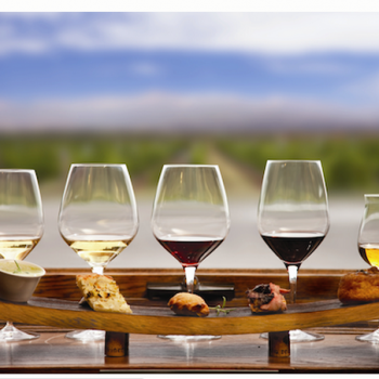7 Wine Pairing Tips For A Delicious Wedding Meal (Tampa, Florida Wedding Planners)