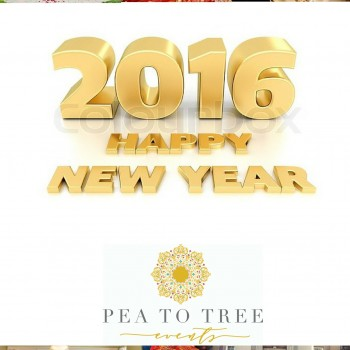 Happy New Year 2016 (Tampa, Wedding Planner)